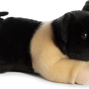 "12"" Hampshire Pig"