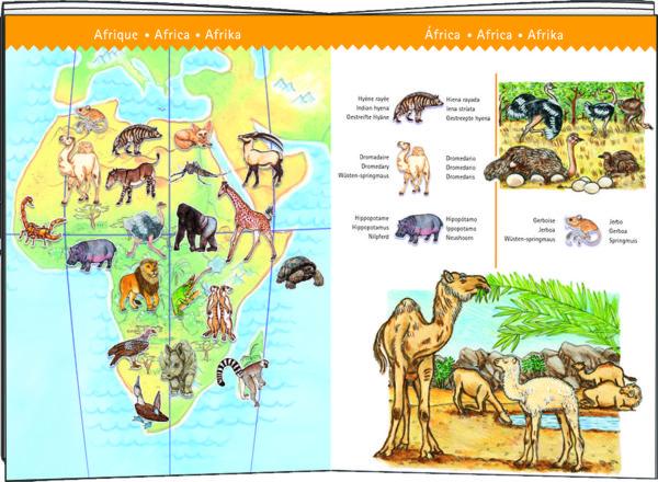 Observation World Animals + Booklet