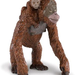 Orangutan with Baby