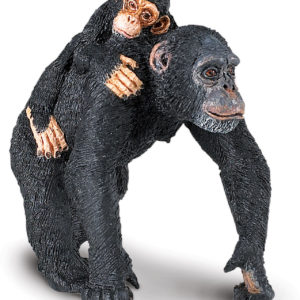 Chimpanzee with Baby