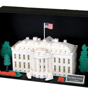 Pn the White House